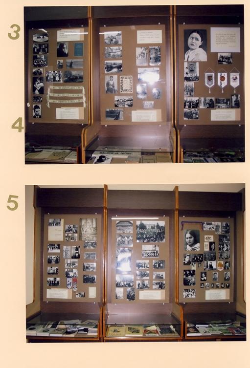 3. S. Nėries literatūrinė veikla, gyvenimas Panevėžyje; 4. S. Nėries įamžinimas gimnazijoje; 5. Gimnazijos literatūrinė veikla